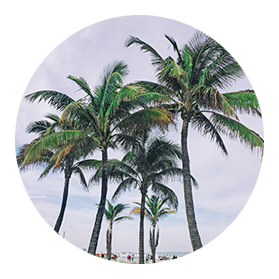 Find Florida Snowbird Vacation Rentals by Owner | Offseason